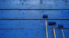 Wie Wandfarben wirken