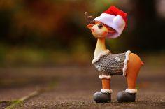 Weihnachtsdeko ohne Kitsch – So geht's