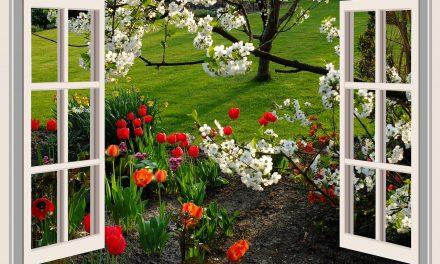 Räume ohne Klimaanlage kühlen- die Vorteile der passiven Kühlung